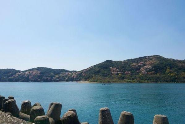 津田の風景