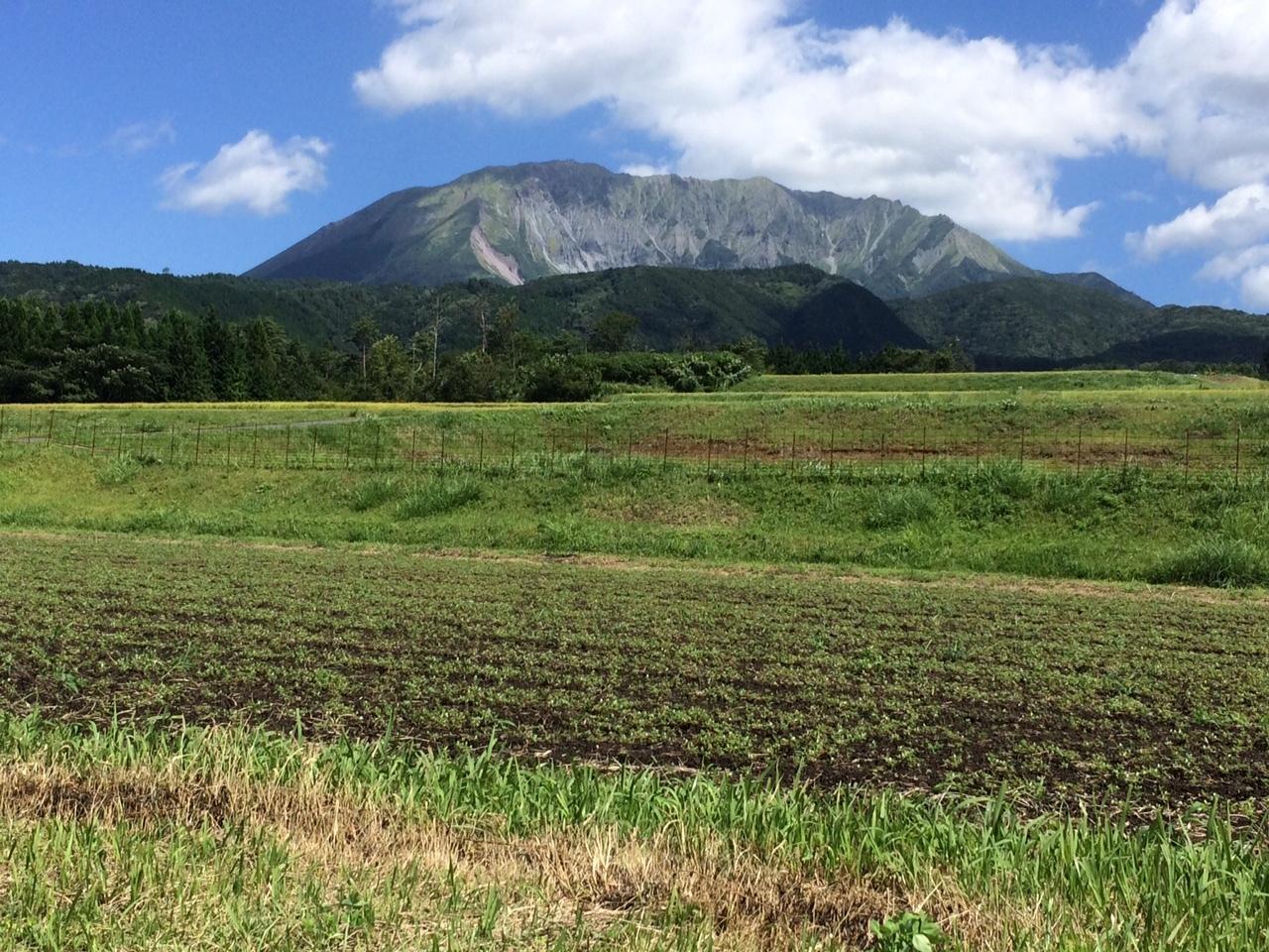 160831大山11.JPG