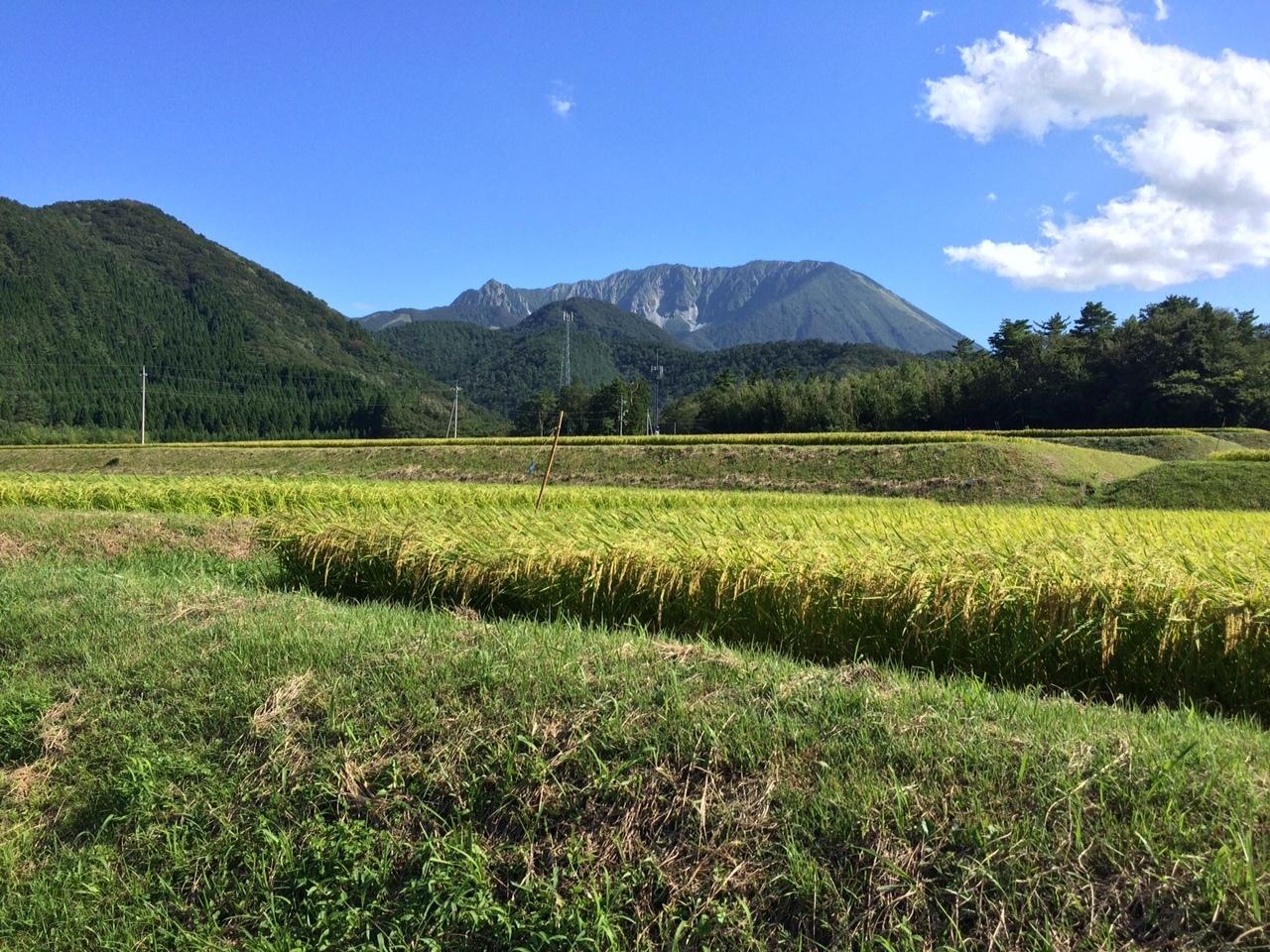 160831大山29.JPG