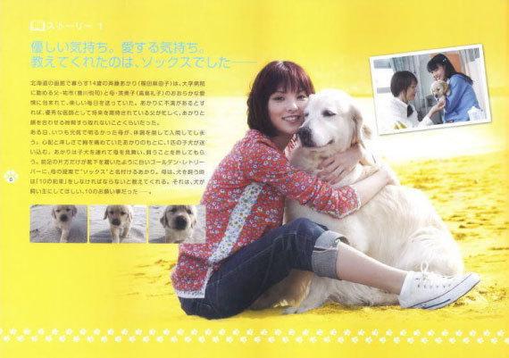 犬と私の10の約束_1