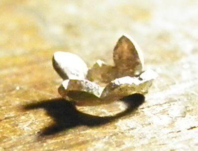 アーチ状の石枠 葉の萌ゆる (1)
