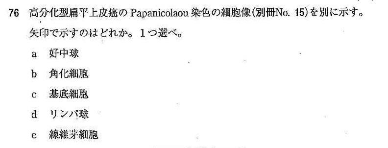 110c76パパニコロー