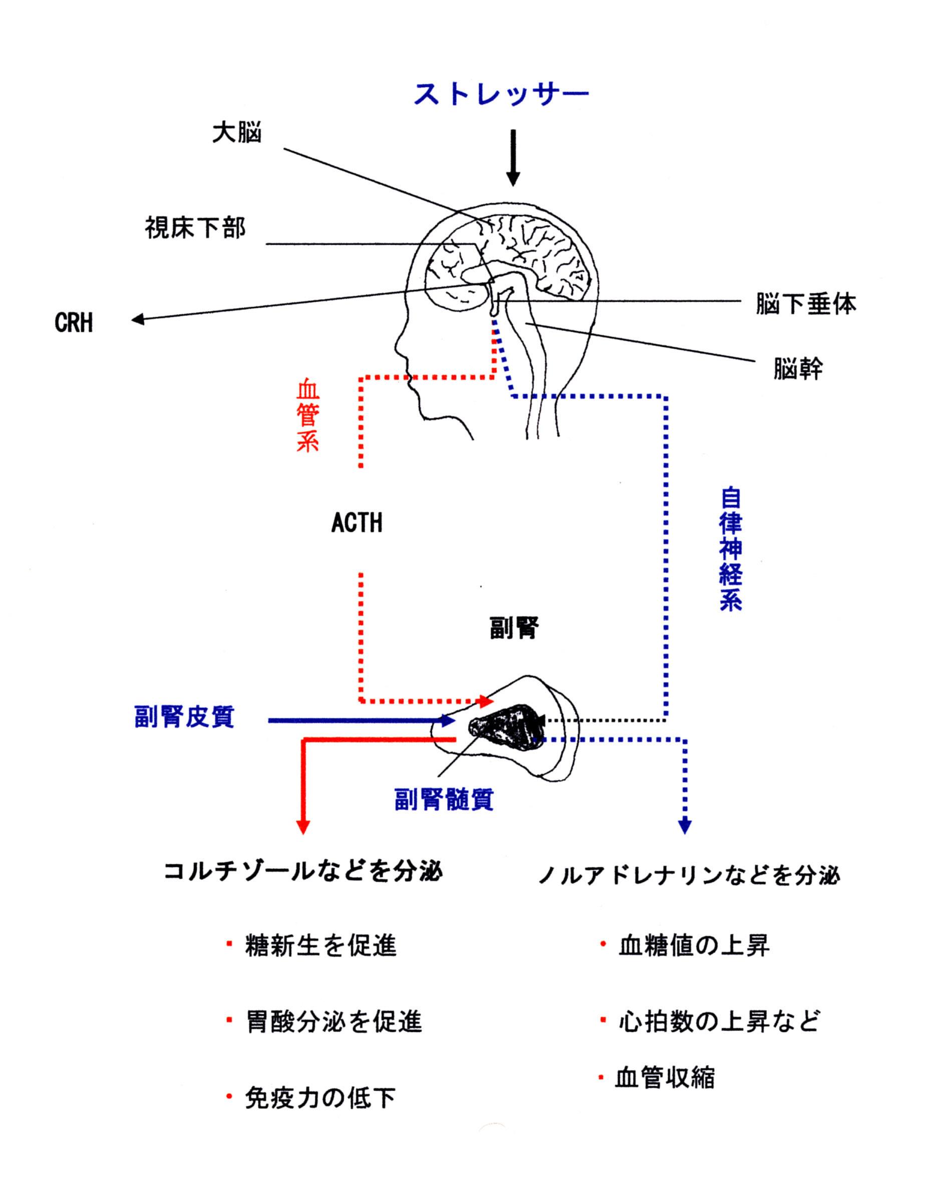 fig_2_12.jpg