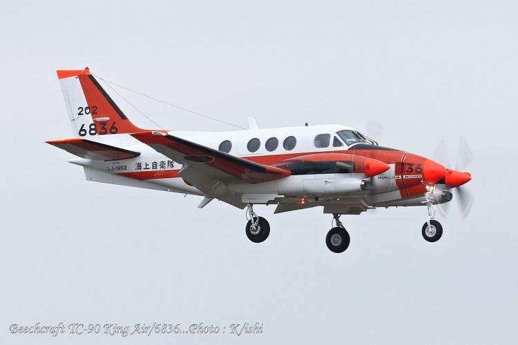 A-4469.jpg
