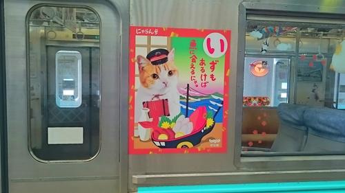 kawazu6.jpg