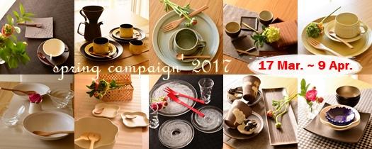 campaign2017.jpg