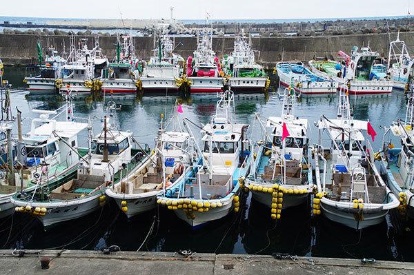 普代村の大田名部漁港