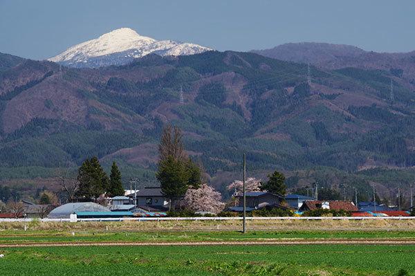 矢巾町から冠雪の早池峰