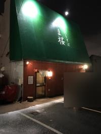 yamazakura03.jpg