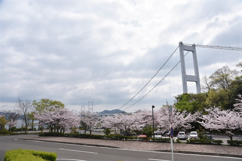 DSC_2201糸山公園