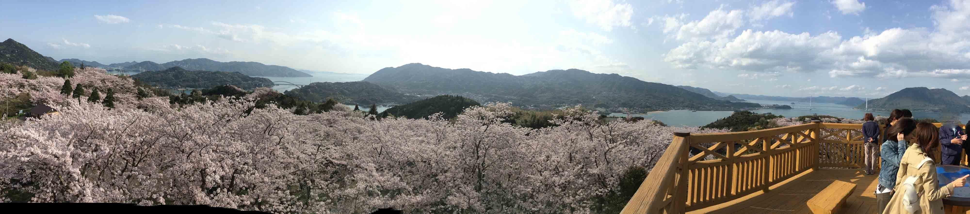 IMG_0347開山