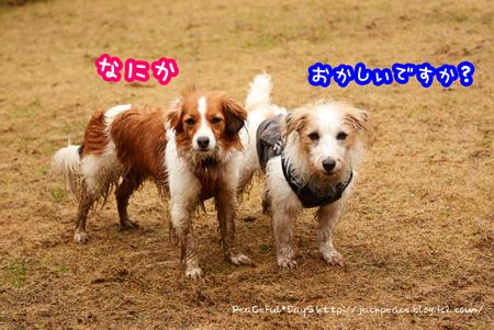 170223_yuasa9.jpg