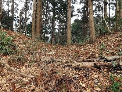 編集_2017年2月24日福井市南山城の踏査 (8)
