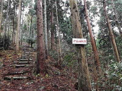 2017年2月26日越前市矢谷山城跡 (8)
