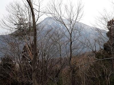 2017年2月26日越前市矢谷山城跡 (9)