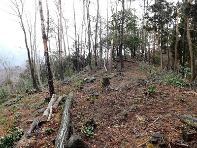 2017年2月26日越前市矢谷山城跡 (10)