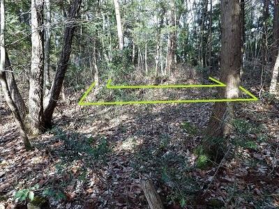 福井市烏ヶ岳城跡の踏査2017年2月28日 (2)