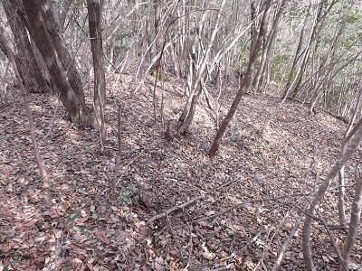 2017年3月4日越前町姥ヶ屋敷跡の踏査 (1)