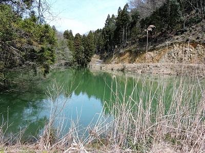 編集_坂井市丸岡町上野山城跡の踏査42 (2)