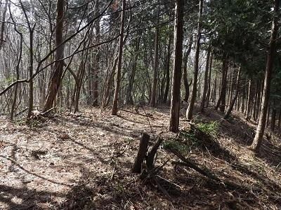 編集_あわら市東山上野山城跡の踏査2017年3月26日 (3)