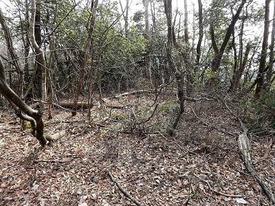 編集_あわら市東山上野山城跡の踏査2017年3月26日 (9)