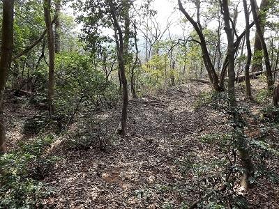 編集_あわら市東山上野山城跡の踏査2017年3月26日 (23)