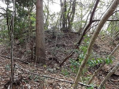 編集_あわら市東山上野山城跡の踏査2017年3月26日 (29)