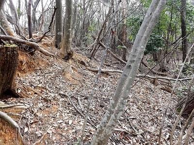 編集_あわら市東山上野山城跡の踏査2017年3月26日 (35)
