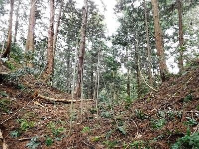2017年3月小山城跡の踏査(ブログ用) (8)