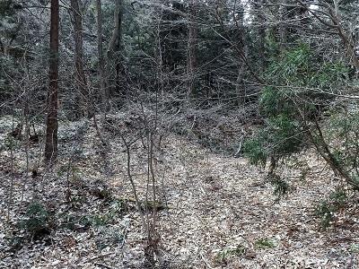 2017年3月小山城跡の踏査(ブログ用) (9)