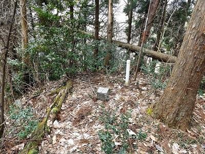 2017年3月小山城跡の踏査(ブログ用) (19)