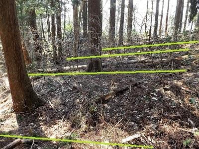 2017年3月大野市茶臼山城跡の踏査(ブログ用) (15)