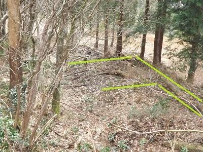 2017年4月1日大野市牛ヶ原城跡の踏査 (11)
