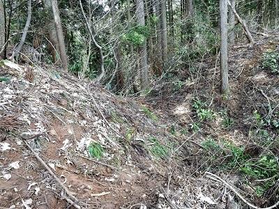 2017年4月1日大野市牛ヶ原城跡の踏査 (25)