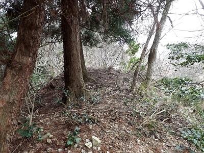 2017年4月3日大野市佐開城跡の踏査 (5)