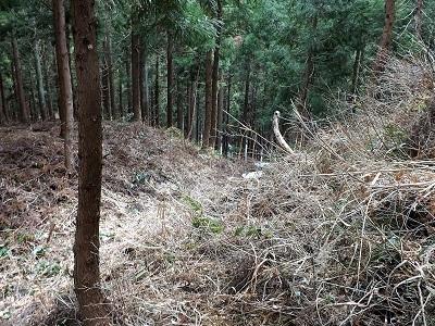 2017年4月3日大野市佐開城跡の踏査 (11)