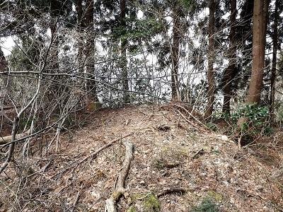 2017年4月3日大野市佐開城跡の踏査 (15)