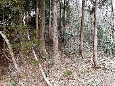 2017年4月3日大野市佐開城跡の踏査 (18)