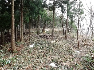 2017年4月3日大野市佐開城跡の踏査 (22)