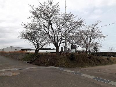川口城と神宮寺城の見学 (1)