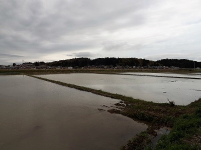 川口城と神宮寺城の見学 (2)