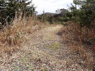 2017年4月13日織田城跡の踏査(ブログ用) (4)