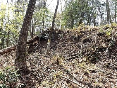 2017年4月13日織田城跡の踏査(ブログ用) (10)