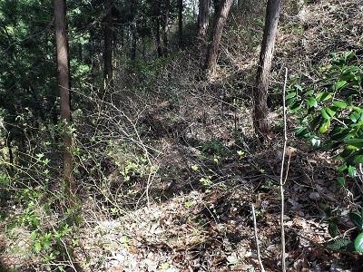 2017年4月13日織田城跡の踏査(ブログ用) (15)
