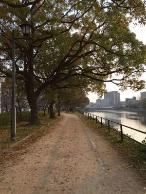 IMG_4382 川