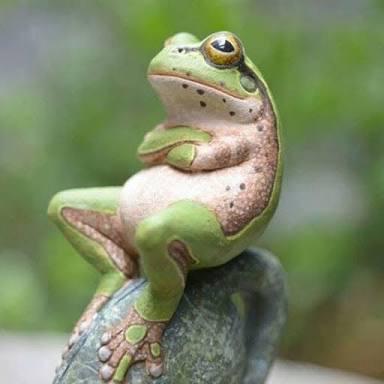 カエル腕組み