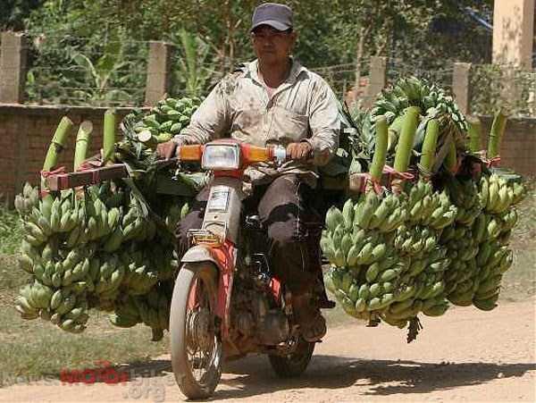 バイク過積載バナナ