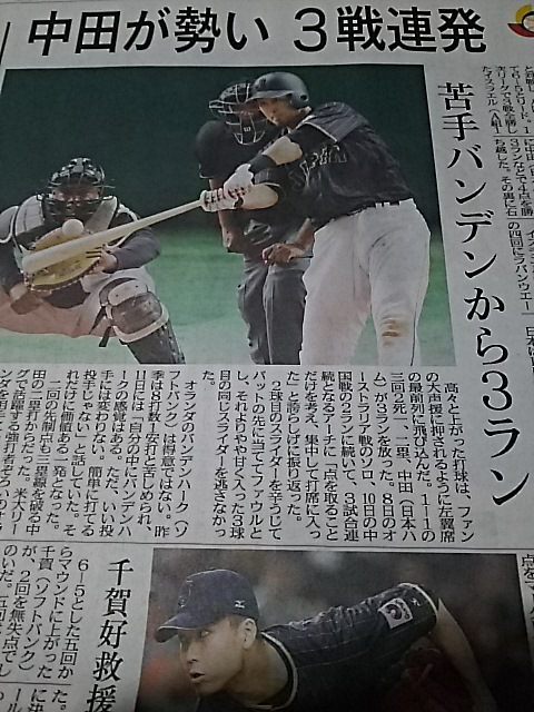 DSC_nakata.jpg