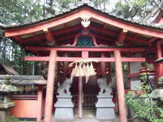 松尾神社本殿拝所