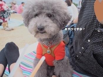 花火大会20160723-6